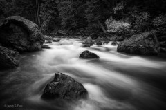 Papp-James_Nooksack-RIver-Rush-