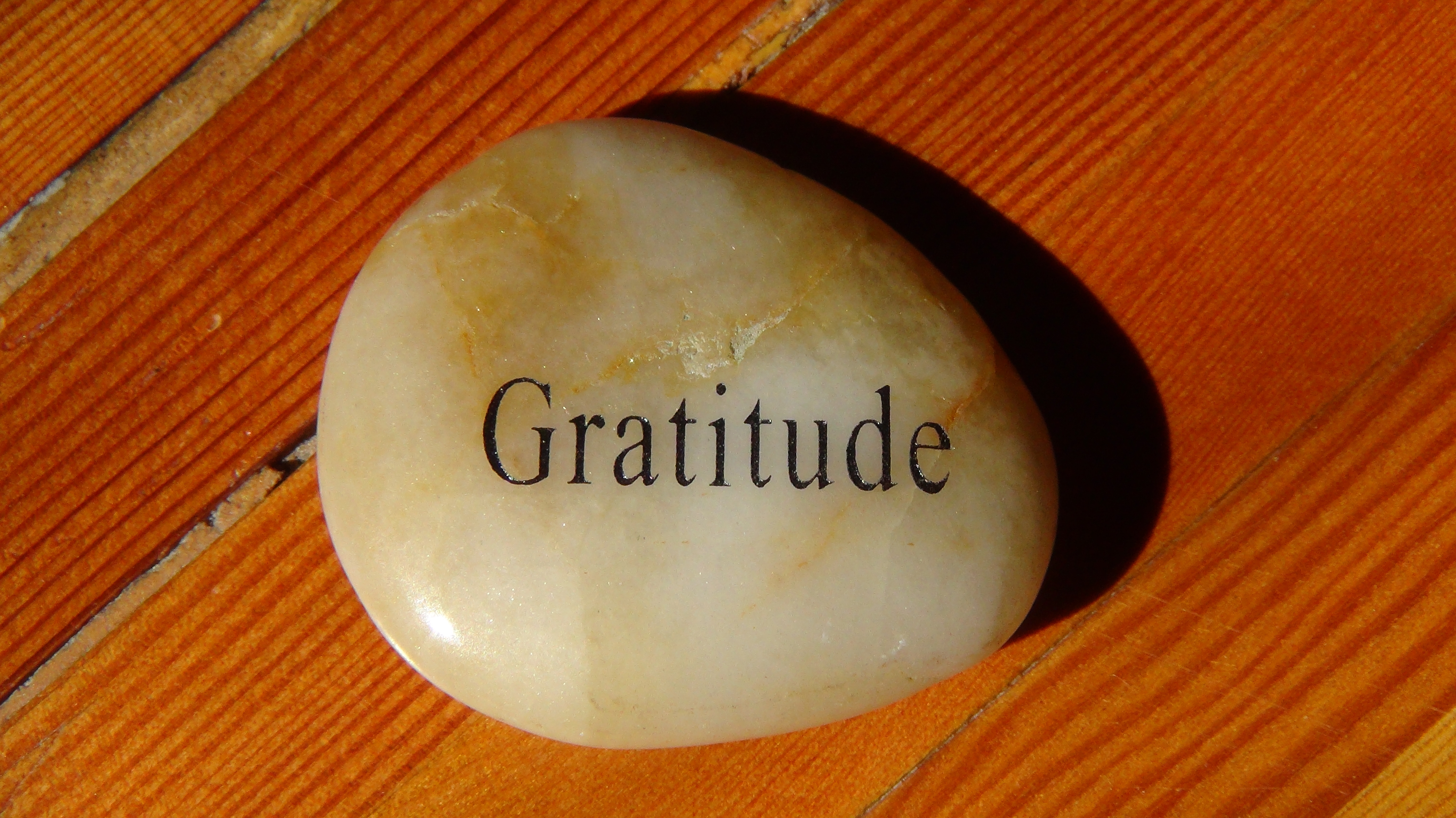 The Productive Power of Gratitude. What are you grateful ...
